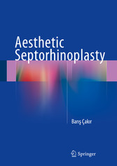 Aesthetic Septorhinoplasty